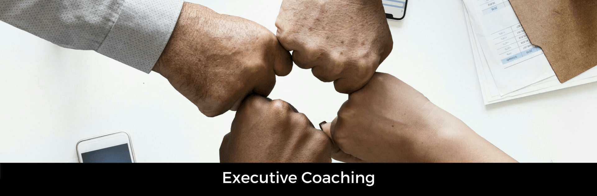 Picture captioned executive coaching.