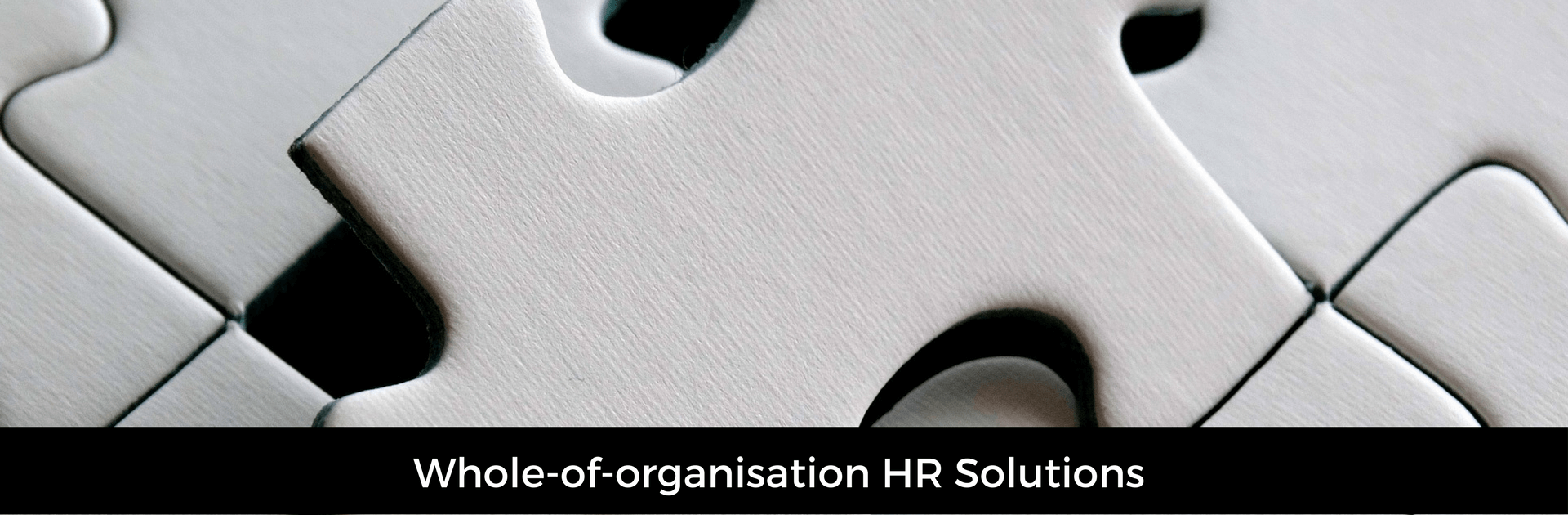 Picture captioned whole of organisation HR solutions. Background image of a jigsaw
